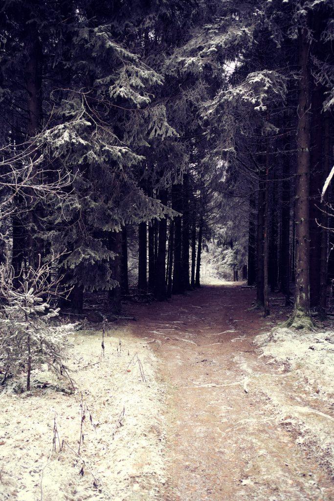 Winterwandern Wandern Deutschland Kreuzberg Bayern Rhön
