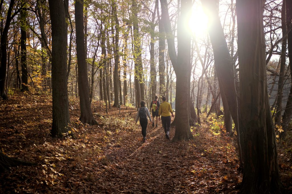Wandern Brandenburg Märkische Schweiz Deutschland Herbst Winter