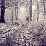 Winterwandern Wandern Deutschland Milseburg Hessen Rhön