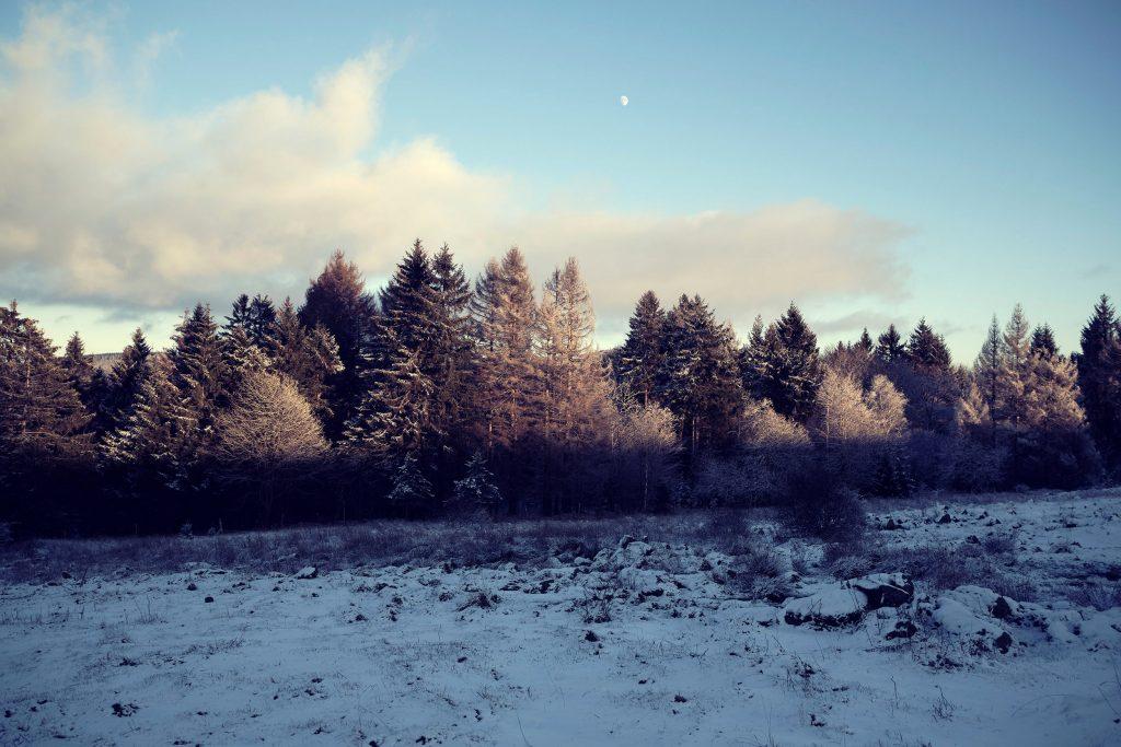 Wandern Winterwandern Deutschland Hessen Rhön Rotes Moor Winter