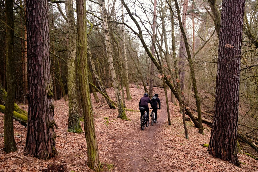 Berlin Brandenburg Grunewald Mountainbike Gravelbike