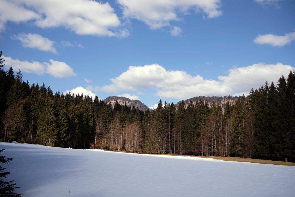 Bayern Sylvensteinsee Winter Schnee Outdoor Nature
