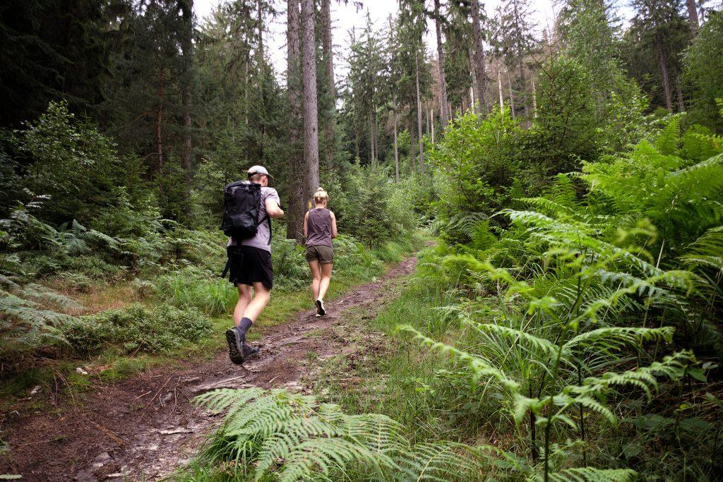 Elbsandsteingebirge Saechsische Schweiz Wandern Tagestour Sachsen